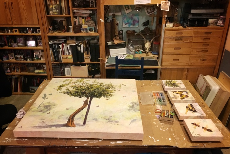 Worktable in the art studio of Judith Monroe