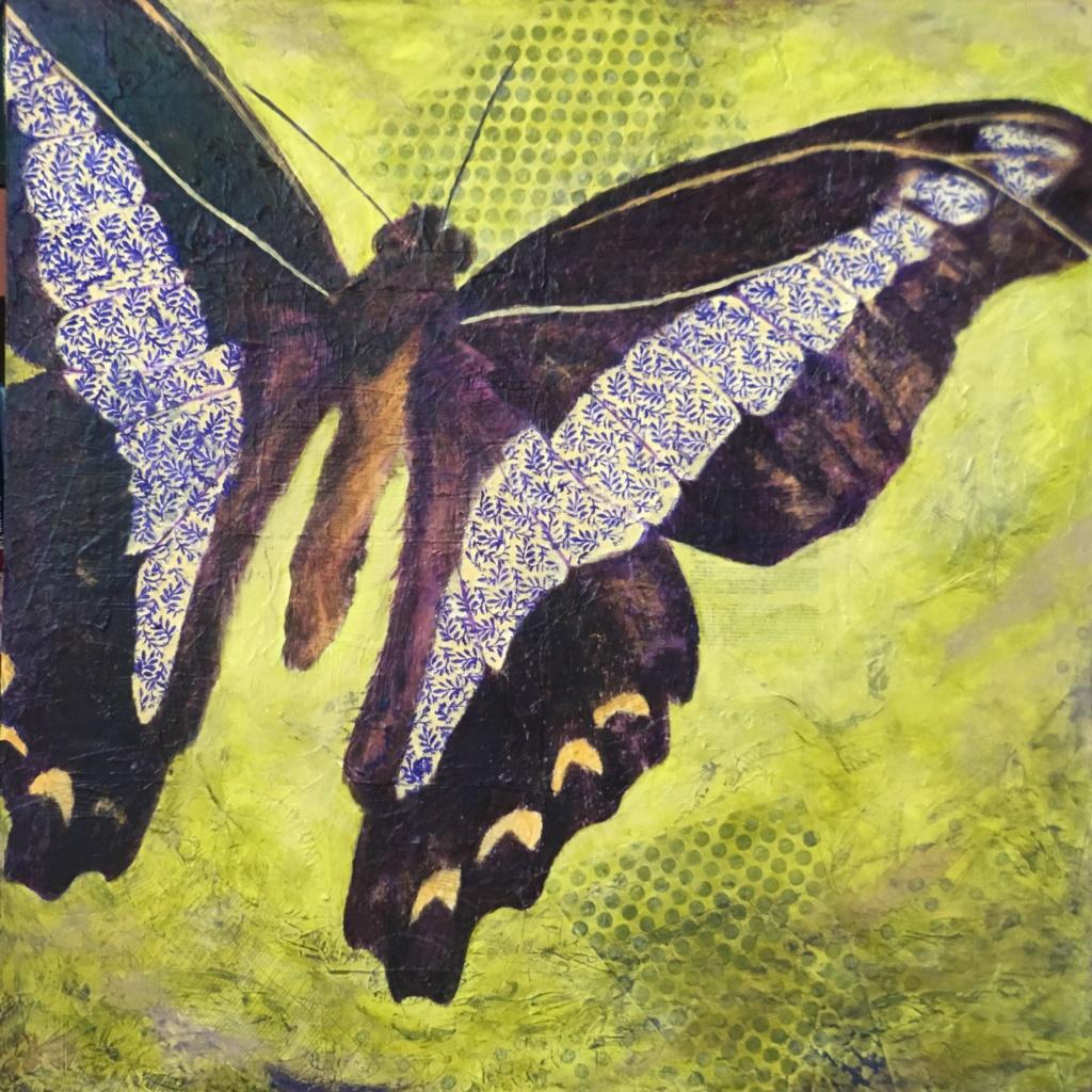 butterfly, mixed media art