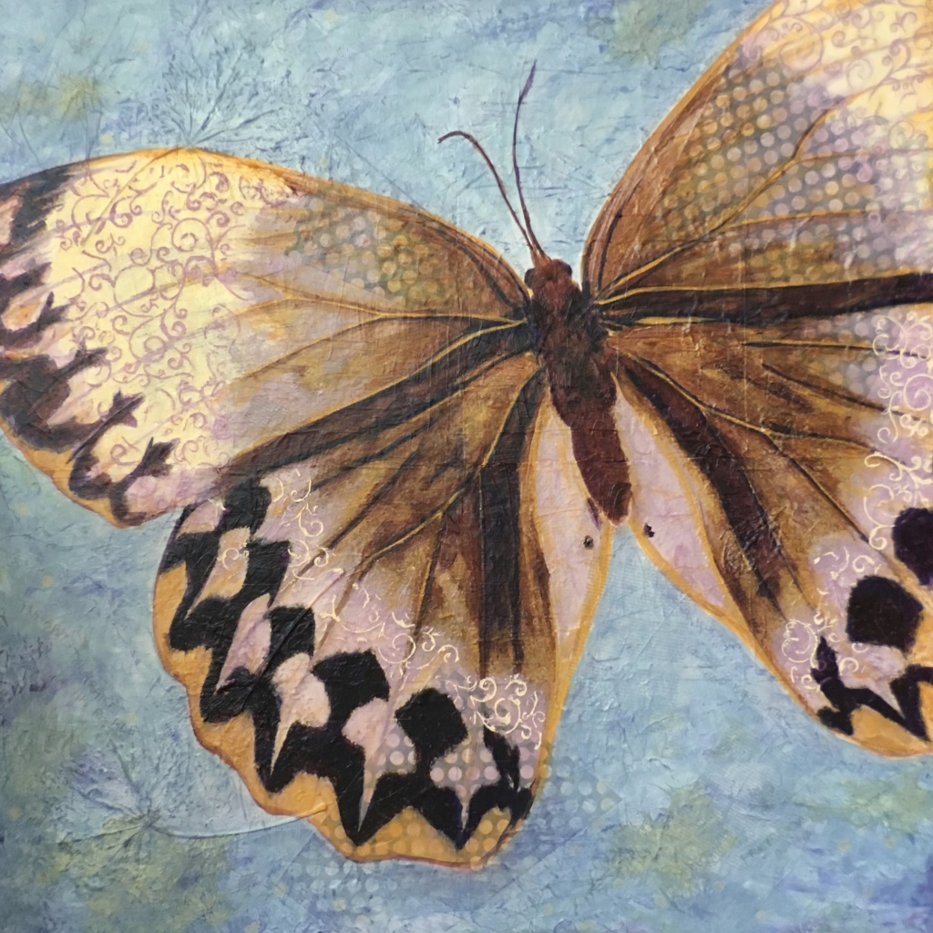 Butterfly, freedom, mixed media